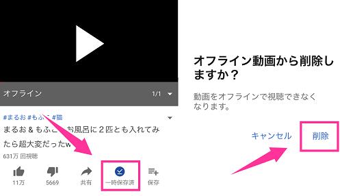 オフライン動画を削除