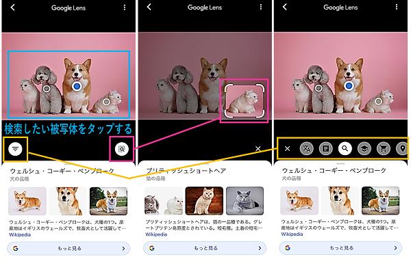 Googleレンズで被写体を選択